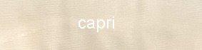 Farbe_capri_CdR_vidrio-a_2